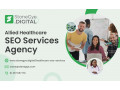 allied-healthcare-seo-services-agency-small-0