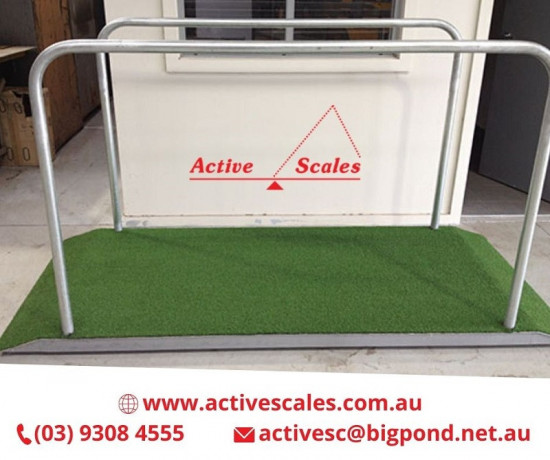 best-deals-on-horse-weighing-scales-in-melbourne-big-0
