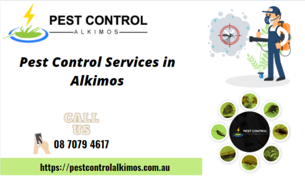 professional-pest-control-services-in-alkimos-big-0