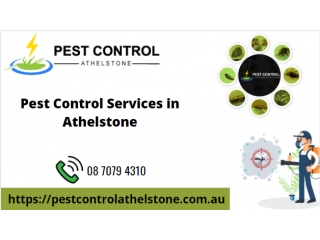 Pest Control Services in Athelstone