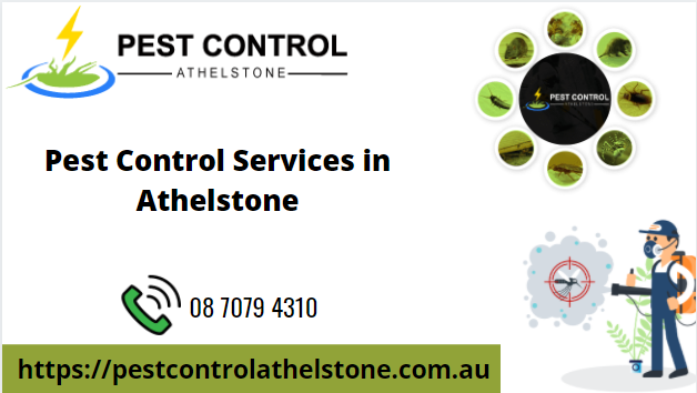 pest-control-services-in-athelstone-big-0