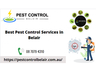 Best Pest Control Services in Belair