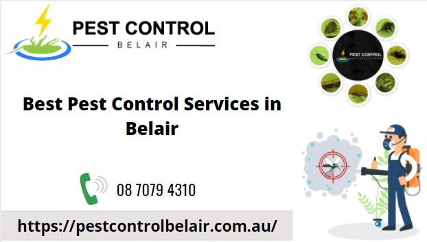 best-pest-control-services-in-belair-big-0