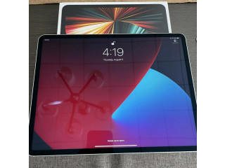 Apple iPad Pro 4th Gen. 512GB, Wi-Fi + 4G (Unlocked), 12.9 in - Space Gray