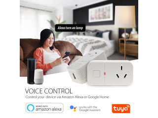 Smart Plug WiFi Smart Socket With Remote Control Voice