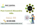 top-pest-control-services-in-alexandra-hills-small-0