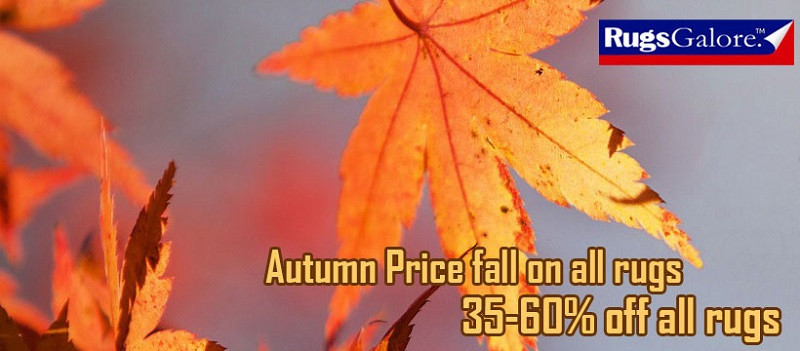 autumn-price-fall-get-upto-60-off-on-all-rugs-big-0